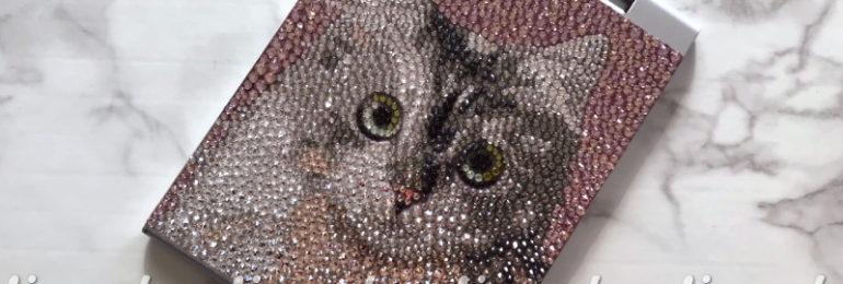 猫ちゃんデコミラー