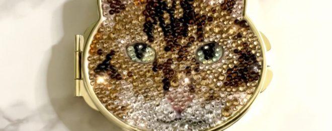 ベンガル猫デコミラー